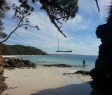 featured image Jervis Bay (Beach) ovvero Piccoli problemi di mare